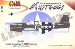 1-24-P-51B-MUSTANGLEAKIN-LIZZ-and-341944