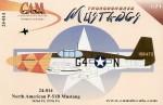 1-24-P-51B-Mustang-1-42-106473-G4-N-362FS-3