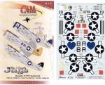 1-48-Republic-P-47N-Thunderbolt-3