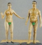 54mm-Academy-figures-3-Male-2-Female