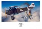 Fokker-D-VII-Alb-velikost-A2