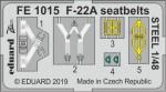 1-48-F-22A-seatbelts-STEEL