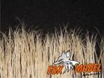 1-35-Vysoka-trava-sucha-Tall-grass-dry-10-pcs