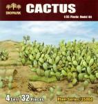 1-35-Cactus