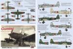 1-48-Ki-51-Sonia-GUNTEI-7x-camo