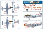 1-32-North-American-P-51D-44-73623-My-Achin-Ass-Maj-Harry-C-