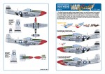 1-32-North-American-P-51D-10-NA-Mustang-44-14361-WD-K-Fiesty-Sue-Pilot