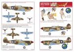 1-48-Curtiss-P-40s-Painted-by-Cpl-Joseph-E-Pumphrey-censured-tails