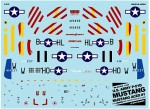 1-144-P-51D-Mustang-Mustang-Ace-1