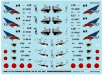1-144-JASDF-F4EJ-Custom-Air-Combat-Meet-2004-Shark-Mouth