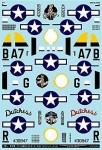 1-72-U-S-Army-P-47D-Thunderbolts-Pin-Up-Girl