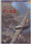 RARE-Curtiss-P-40-vol-I