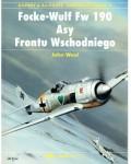 RARE-FOCKE-WULF-FW-190-ASY-FRONTU-WSCHODNIEGO
