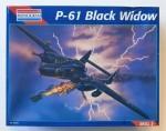 RARE-1-48-P-61-BLACK-WIDOW
