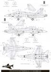 RARE-1-48-McDonnell-Douglas-F-A-18D-