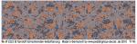1-48-SS-Tarnstoff-Schnurhemd-Herbsttarnung
