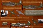 RARE-1-32-A-36A-Apache-Mustang
