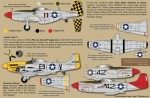1-32-North-American-P-51D-Mustangs-3