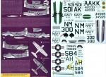 1-32-US-Navy-A-1H-J-Skyraiders-at-War