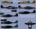 1-32-Northrop-P-61A-P-61B-Black-Widow