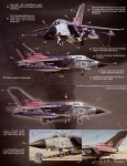 1-48-Tornado-IDS
