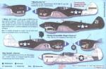 RARE-1-48-P-40N