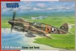 1-72-P-40E-Warhawk-Claws-and-Teeth-4x-camo