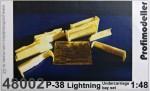 1-48-P-38-Lightning-Undercarriage-bay-set