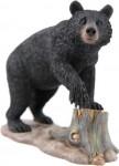 1-35-Black-Bear
