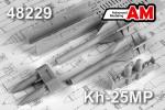 1-48-Kh-25MP-Anti-radar-missile-AS-12-2-pcs-
