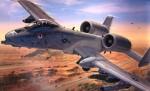 RARE-1-48-A-10-WARTHOG-IRAQI-FREEDOM-SALE