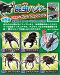 Insect-Hunter-Rhinoceros-Beetle-and-Stag-Beetle-1-Box-10pcs