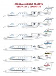 1-48-USAF-C-21-Learjet-35