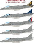 1-48-McDonnell-Douglas-AV-8B-Harrier-II