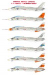 1-72-F-14-Tomcat-The-Early-Years