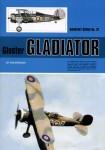 Gloster-Gladiator-by-Tom-Spencer