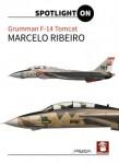 Grumman-F-14-Tomcat