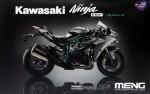 1-9-Kawasaki-Ninja-H2-Pre-Coloured