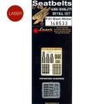 1-48-P-61-Black-Widow-Seatbelts