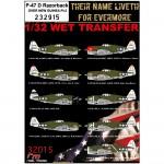 1-32-P-47-D-Razorback-OVER-NEW-GUINEA-Pt-2