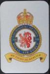 magnetka-hlinikova-310-perut-RAF-75-x-50-mm