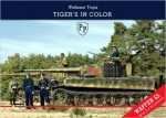 TIGERS-in-COLOR