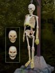 1-13-Monster-Scenes-Skeleton