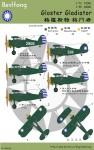 RARE-1-48-Gloster-Gladiator-R-O-C-AF-SALE