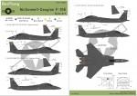 1-48-F-15E-Nose-Art-in-USAF