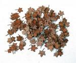 1-35-Leaves-maple-Listi-javor
