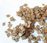 1-35-Leaves-linden-Listi-lipa