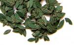 1-35-Green-leaves-cherry-Zelene-listi-tresen