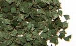 1-35-Green-leaves-birch-Zelene-listi-briza