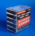 1-35-Withered-leaves-set-Suche-listi-set